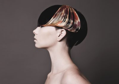 Hair Design Collection